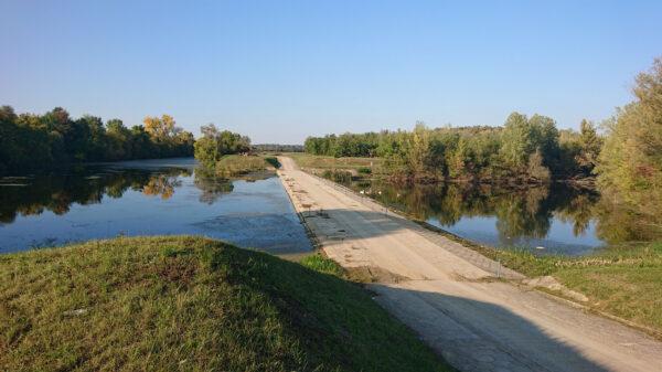 brana, Bosut, preljevnica